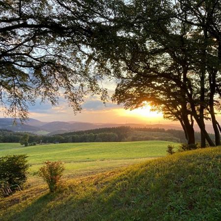 Sonneborn Sundown